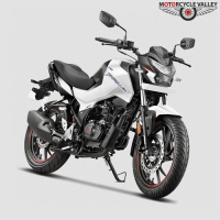 Hero Thriller 160R Feature Review