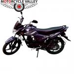 Suzuki-Hayate-Special-Edition-Purple.jpg